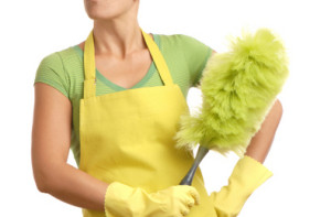 cleaning carpets eco friendly
